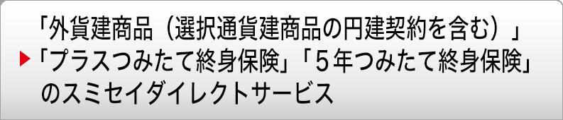 スミセイ ダイレクト サービス